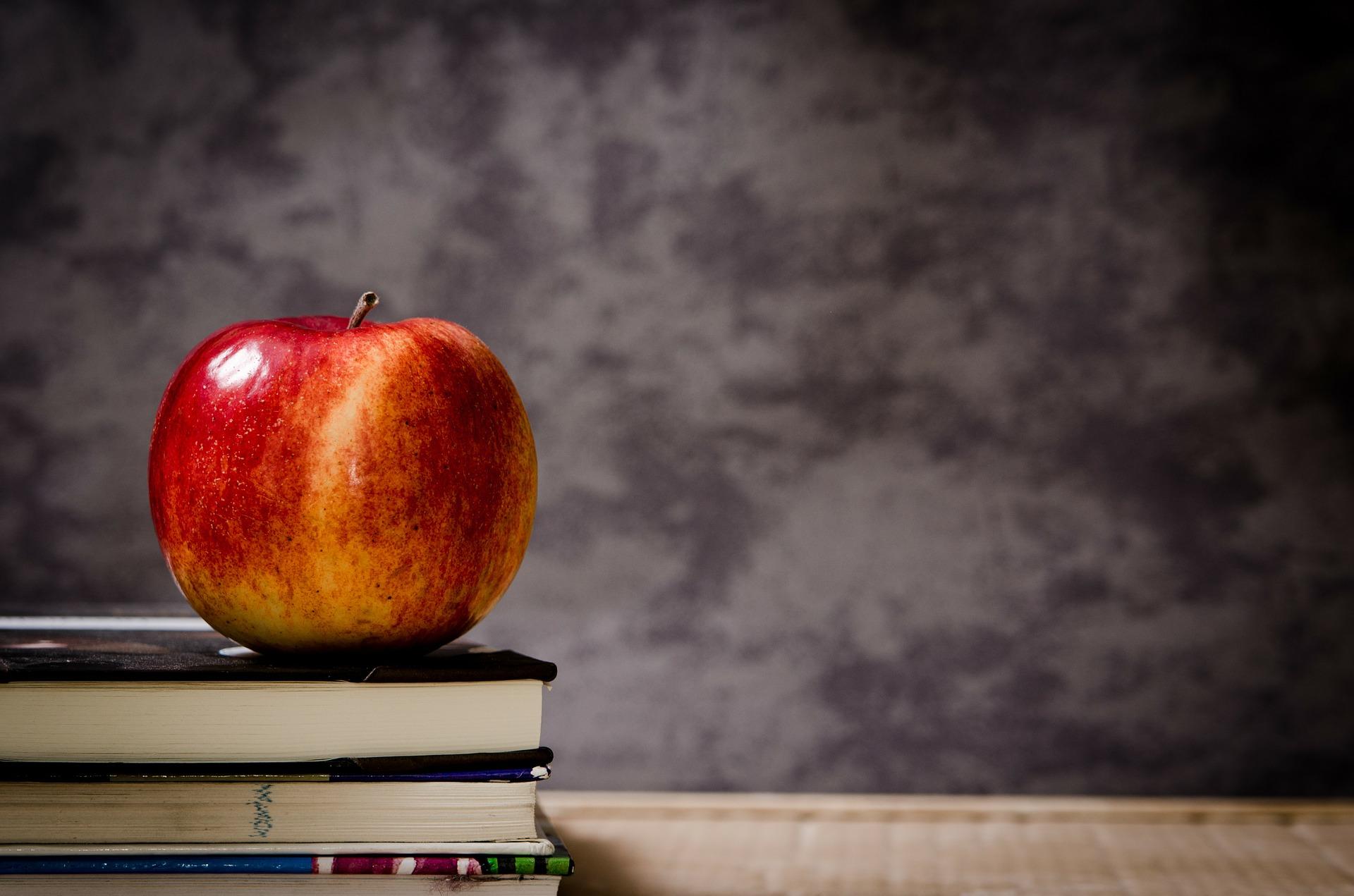 Award Winning Schools – Benders Landing & Benders Landing Estates